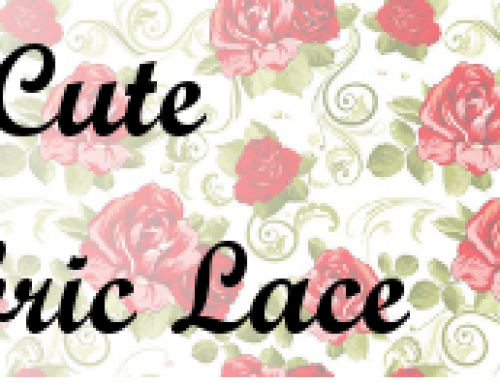 Pretty Cute Fabric Lace